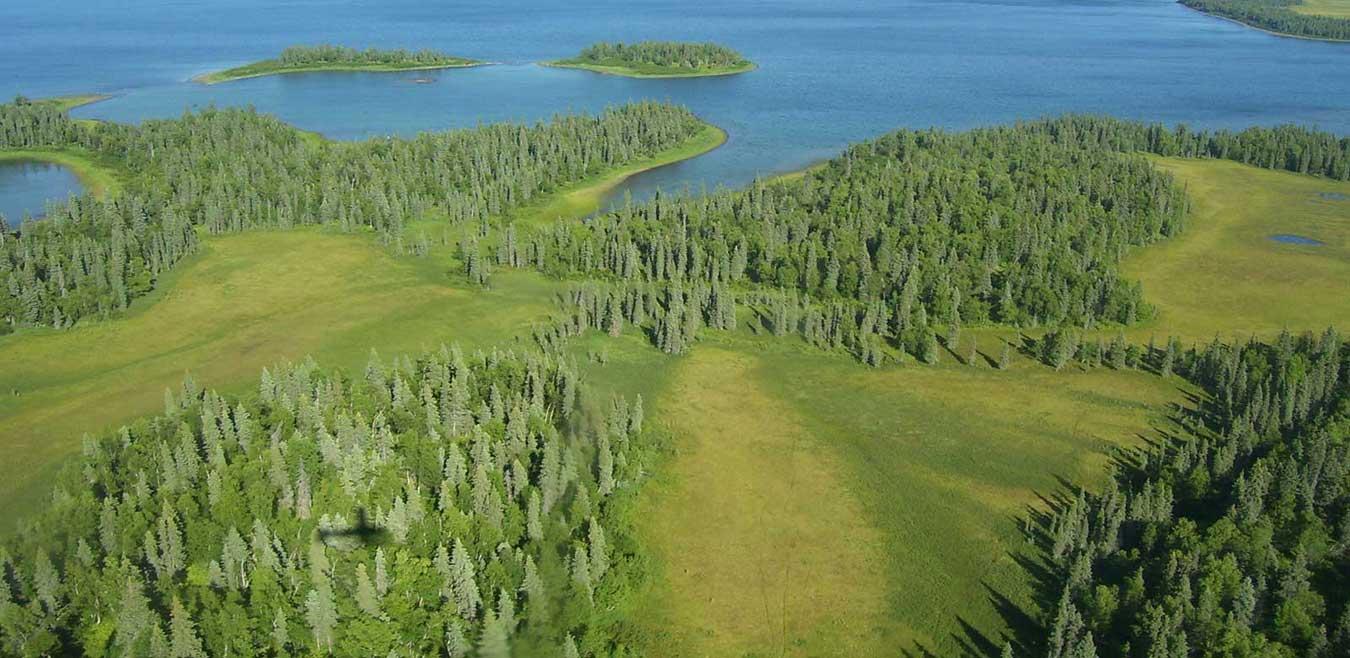Alaska Lands